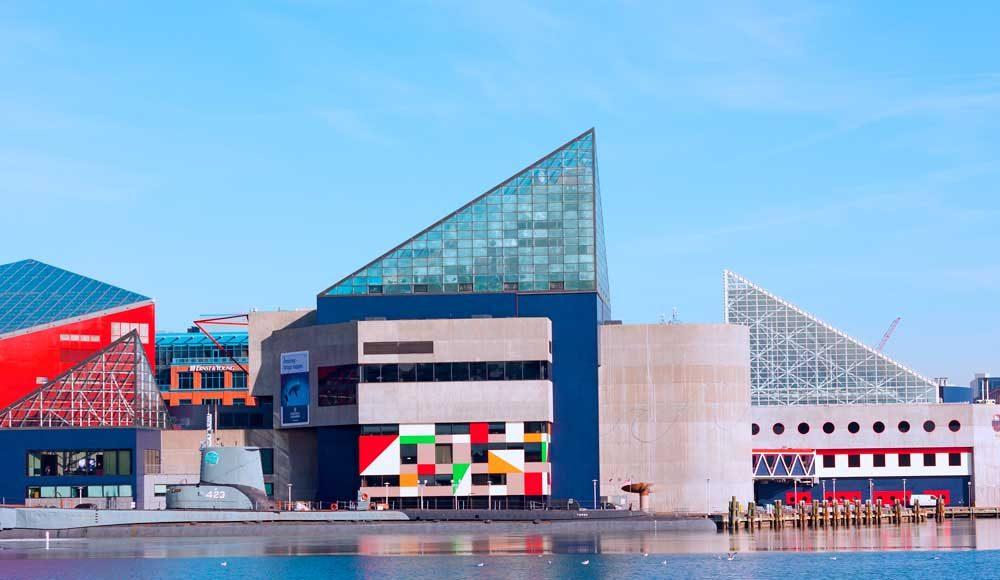 Foto Baltimore's National Aquarium Baltimore's National Aquarium
